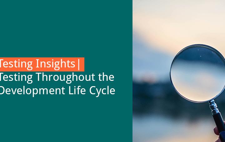 crowdtesting along the development life cycle