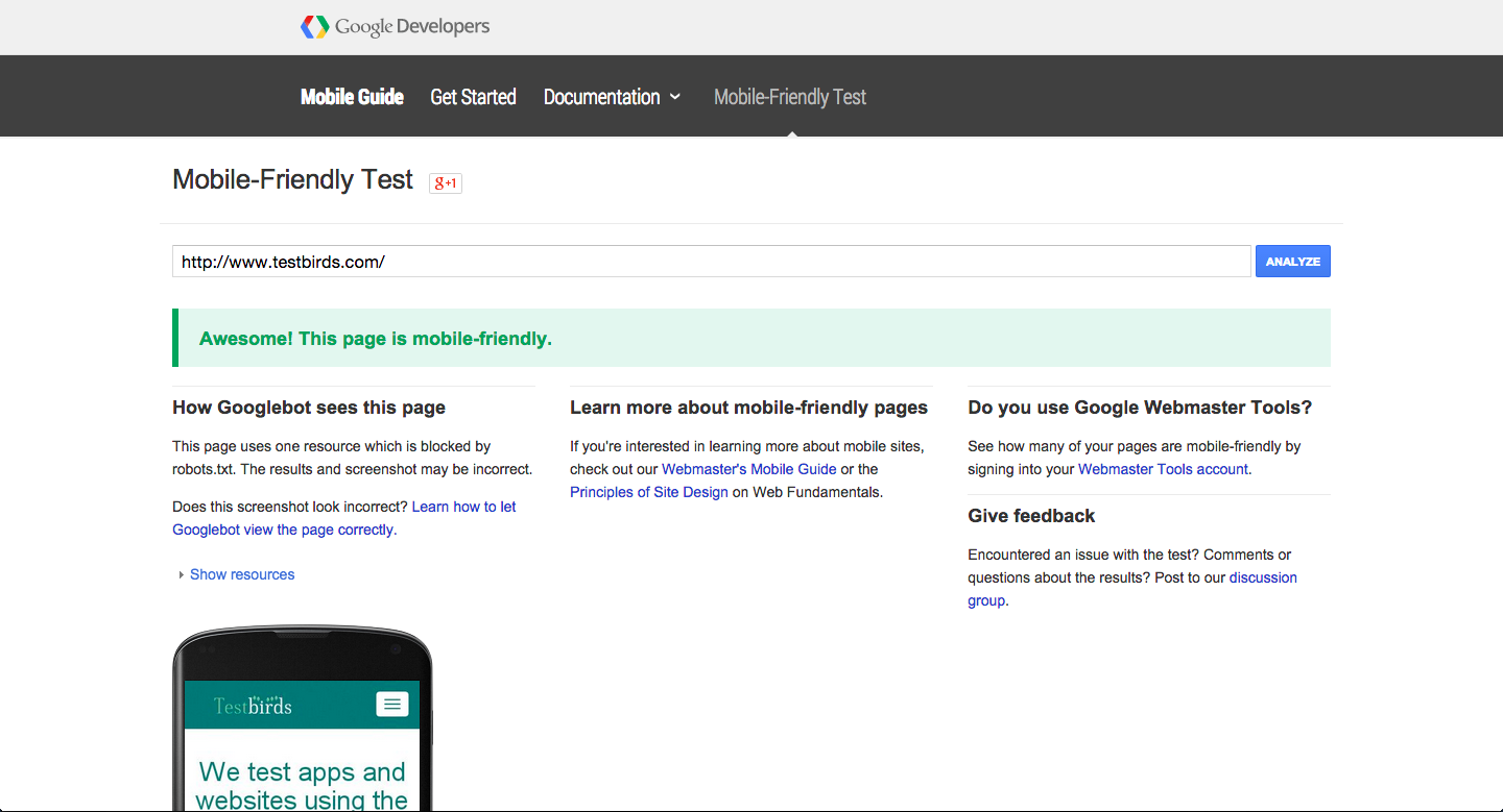 Testbirds passed Google's mobile-friendly test