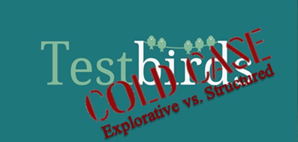 testbirds-coldcase-exploratory-vs-structured-bug-test
