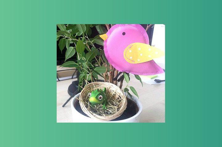 testchameleon-plant-bird